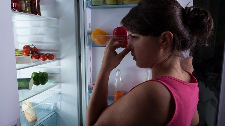 How-To-Get-Smell-Out-Of-Refrigerator
