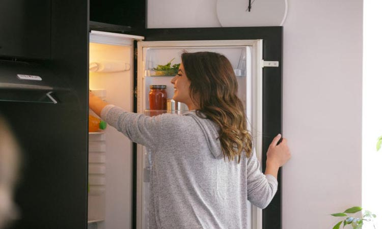 How Refrigerator Works – What's Behind Its Power?
