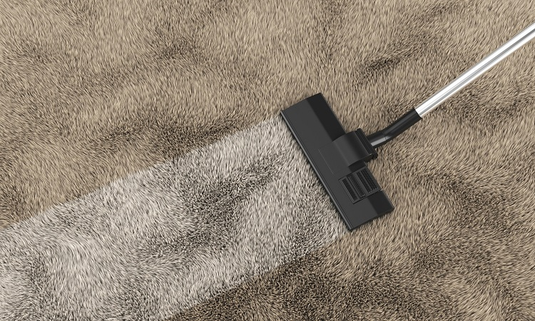 The 7 Best Carpet Cleaner Vacuums For Your Home