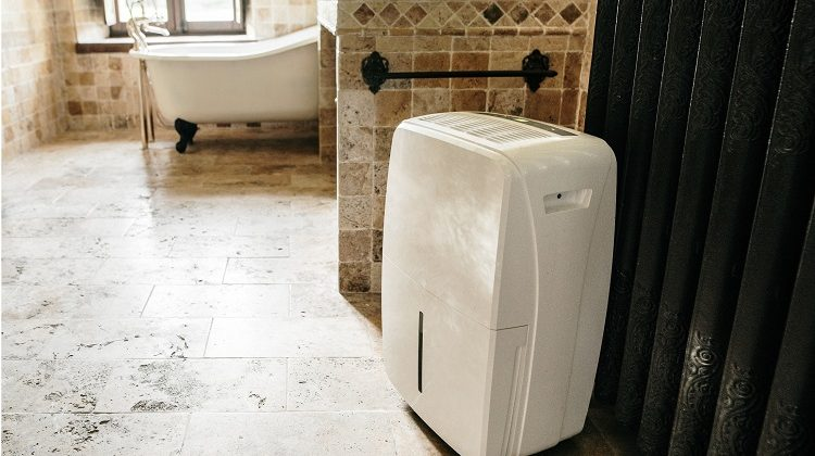 The 7 Best Dehumidifiers For Bathrooms