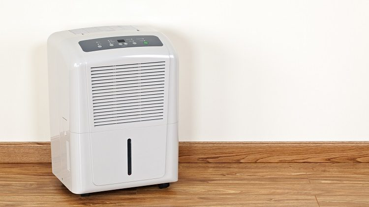 The 7 Best Dehumidifiers For Garages: Protect Your Items