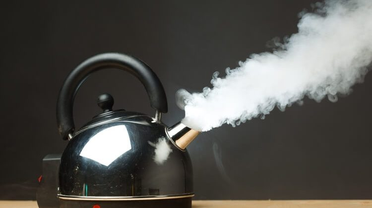 The 7 Best Small Electric Kettles For Home And Office Use
