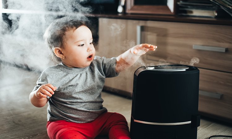 What Kind Of Humidifier Is Best For Your Baby – Types To Choose From
